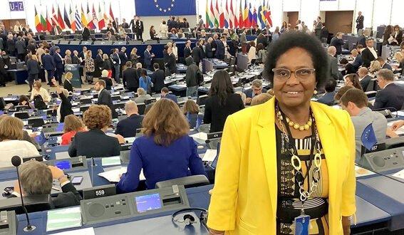 Newsletter: Mein erstes Jahr im Europäischen Parlament