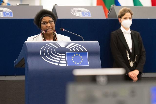 DEVE & AFET – Plenarsitzung: NDICI, Global Europe